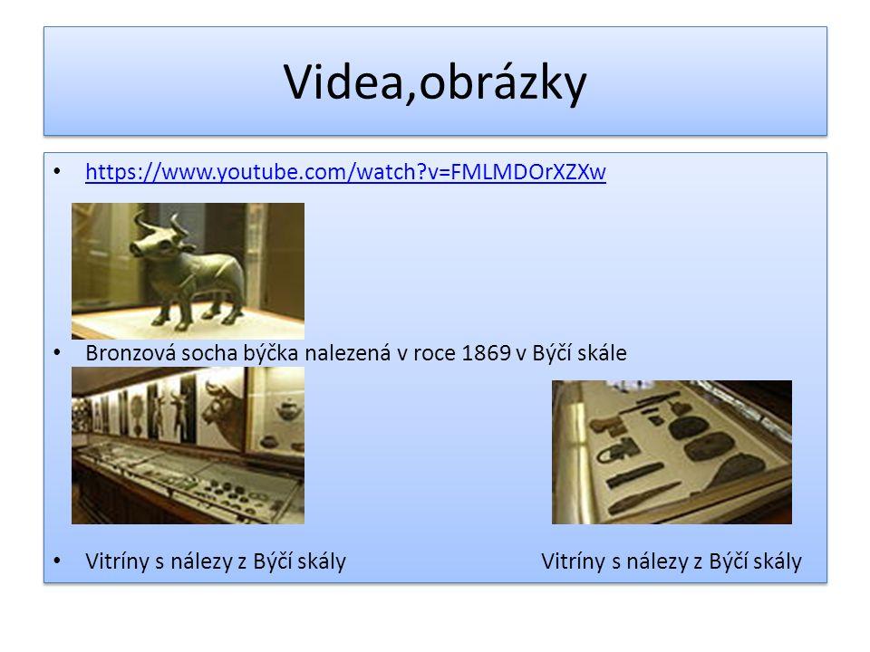 Videa,obrázky https://www.youtube.com/watch?v=FMLMDOrXZXw Bronzová socha býčka nalezená v roce 1869 v Býčí skále Vitríny s nálezy z Býčí skály Vitríny