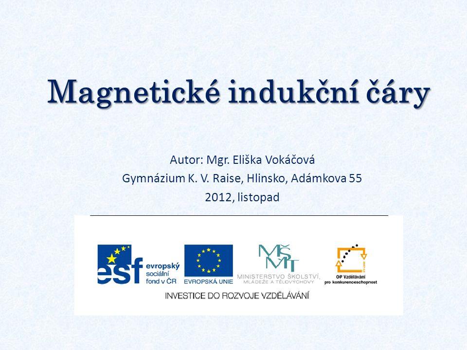 Magnetické indukční čáry Autor: Mgr. Eliška Vokáčová Gymnázium K. V. Raise, Hlinsko, Adámkova 55 2012, listopad