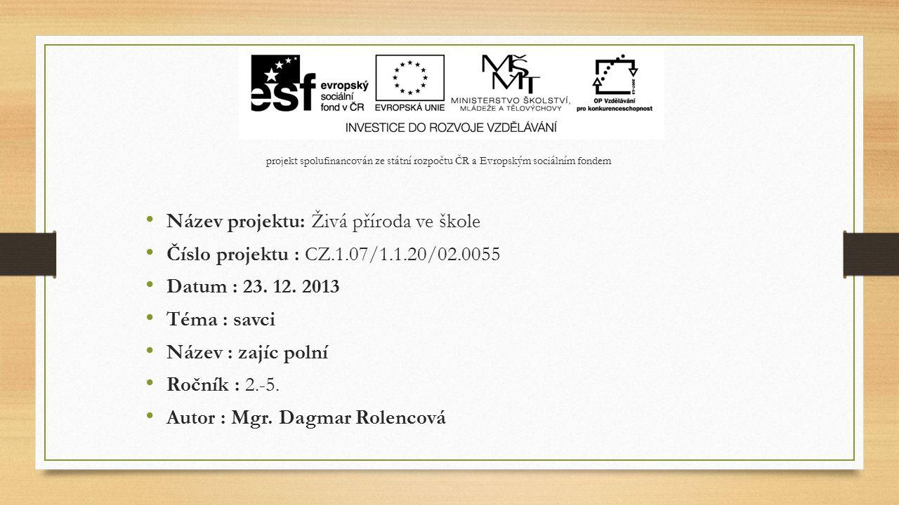 Pracovní list - řešení 1.Obývá hlavně: a) Asii 4.Ve dne: a) pracuje 7.