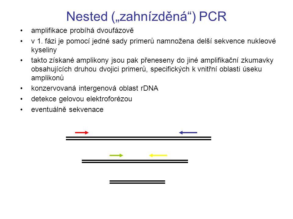"""Nested (""""zahnízděná"""") PCR amplifikace probíhá dvoufázově v 1. fázi je pomocí jedné sady primerů namnožena delší sekvence nukleové kyseliny takto získa"""