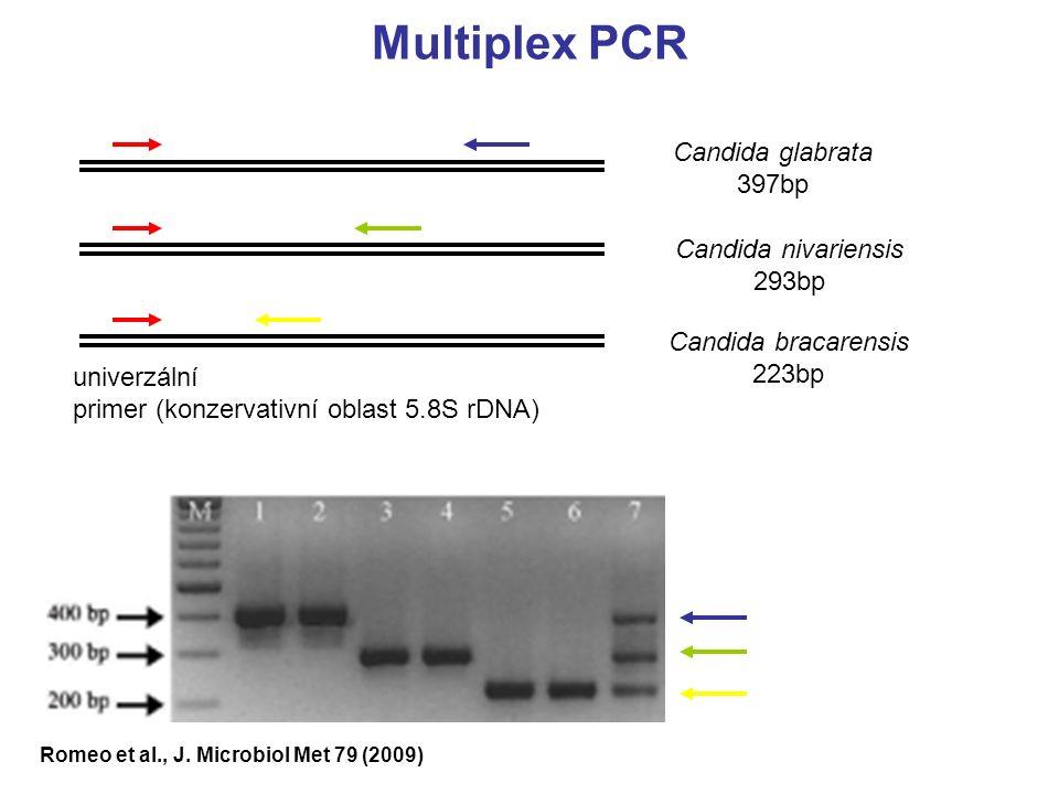 Romeo et al., J. Microbiol Met 79 (2009) univerzální primer (konzervativní oblast 5.8S rDNA) Candida glabrata 397bp Candida nivariensis 293bp Candida