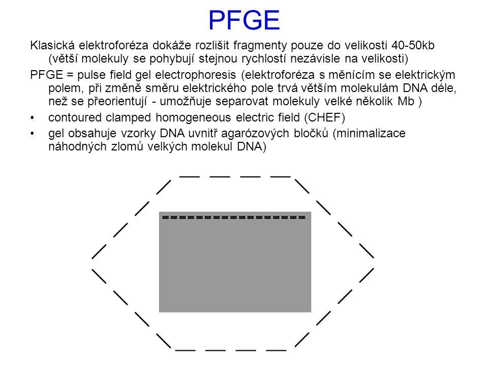 Klasická elektroforéza dokáže rozlišit fragmenty pouze do velikosti 40-50kb (větší molekuly se pohybují stejnou rychlostí nezávisle na velikosti) PFGE