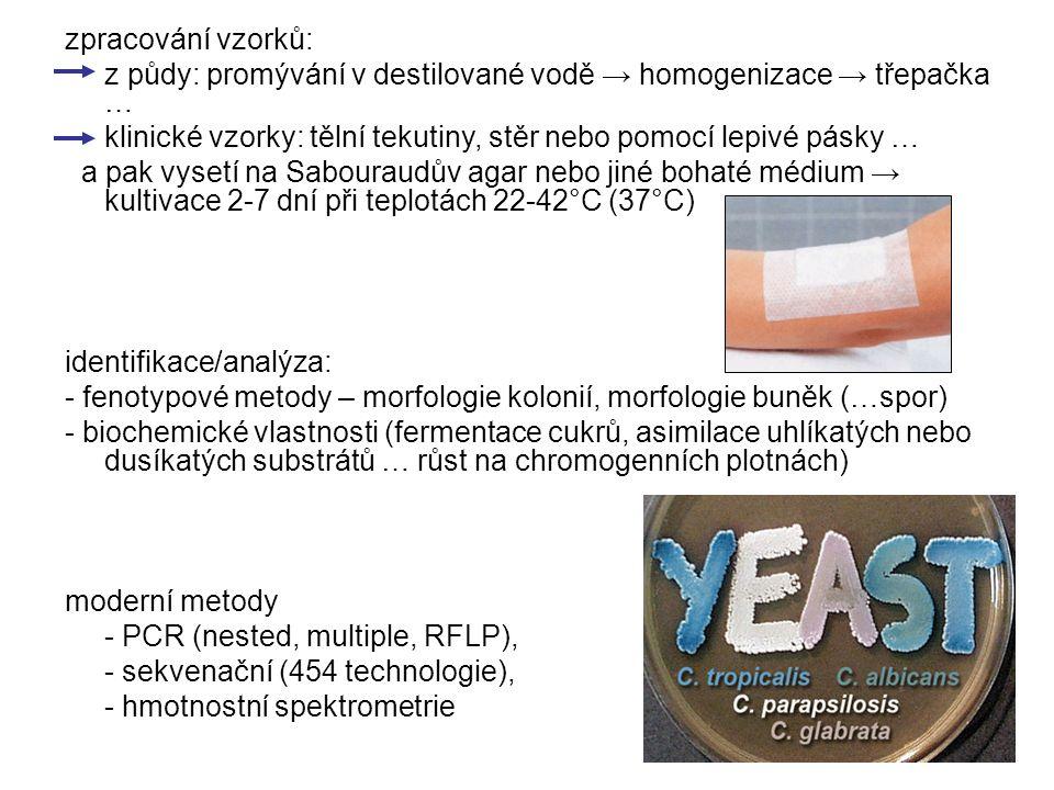 zpracování vzorků: z půdy: promývání v destilované vodě → homogenizace → třepačka … klinické vzorky: tělní tekutiny, stěr nebo pomocí lepivé pásky … a