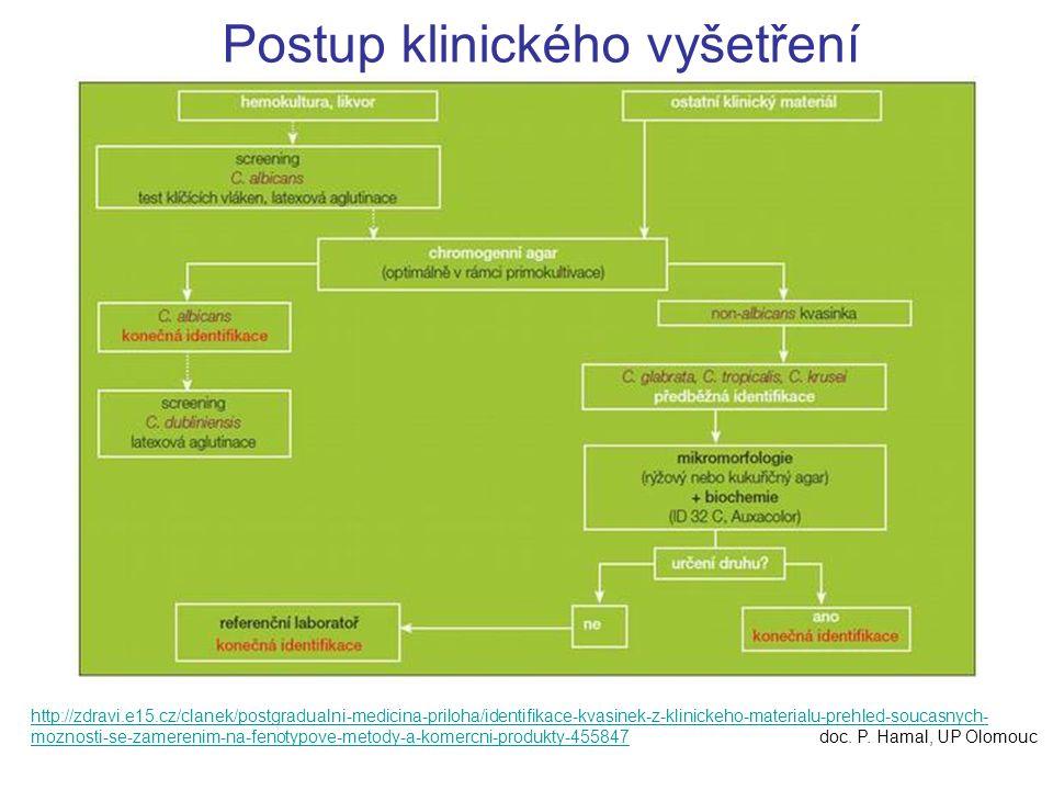 http://zdravi.e15.cz/clanek/postgradualni-medicina-priloha/identifikace-kvasinek-z-klinickeho-materialu-prehled-soucasnych- moznosti-se-zamerenim-na-f