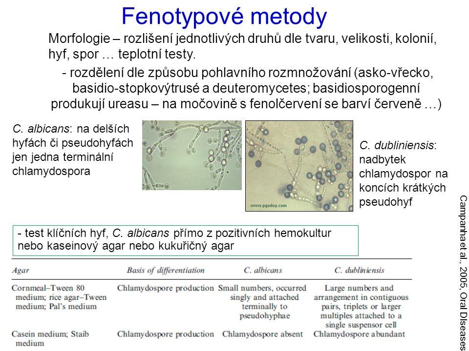 Morfologie – rozlišení jednotlivých druhů dle tvaru, velikosti, kolonií, hyf, spor … teplotní testy. - rozdělení dle způsobu pohlavního rozmnožování (