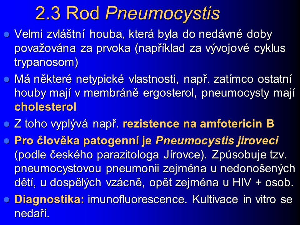 Cryptococcus neoformans http://www.higiene.edu.uy/ciclipa/parasito/Cryptococcus.jpg http://www.mycology.adelaide.edu.au/gallery