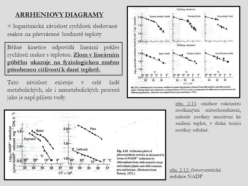 = logaritmická závislost rychlosti sledované reakce na převrácené hodnotě teploty Tato závislost existuje v celé řadě metabolických, ale i nemetabolických procesů jako je např.příjem vody.