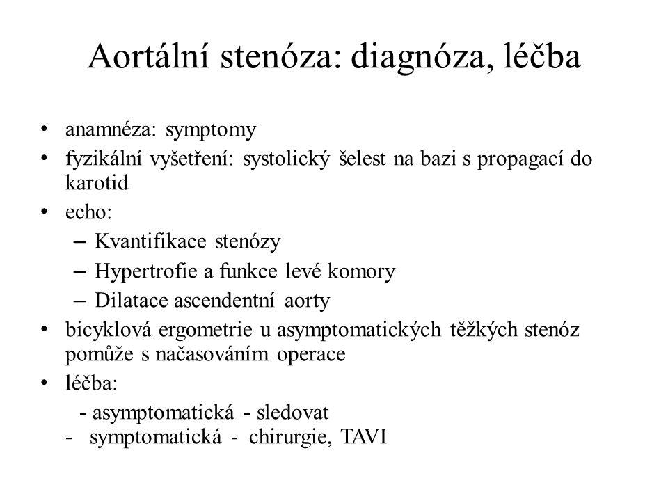 Aortální stenóza: diagnóza, léčba anamnéza: symptomy fyzikální vyšetření: systolický šelest na bazi s propagací do karotid echo: – Kvantifikace stenóz
