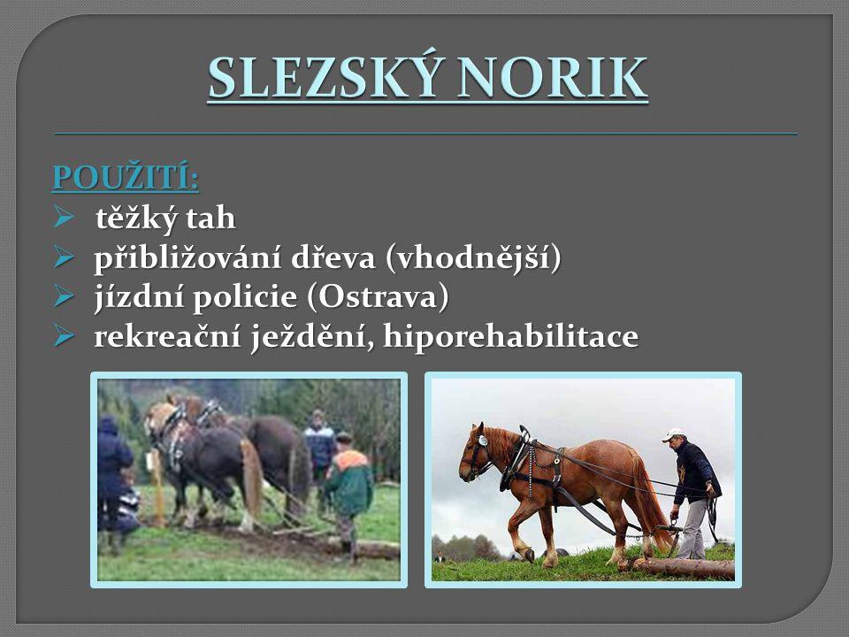 POUŽITÍ: těžký tah  těžký tah  přibližování dřeva (vhodnější)  jízdní policie (Ostrava)  rekreační ježdění, hiporehabilitace