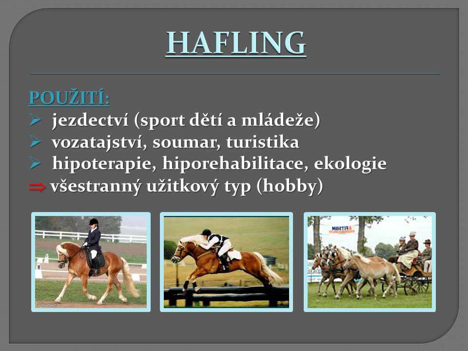 POUŽITÍ:  jezdectví (sport dětí a mládeže)  vozatajství, soumar, turistika  hipoterapie, hiporehabilitace, ekologie  všestranný užitkový typ (hobb