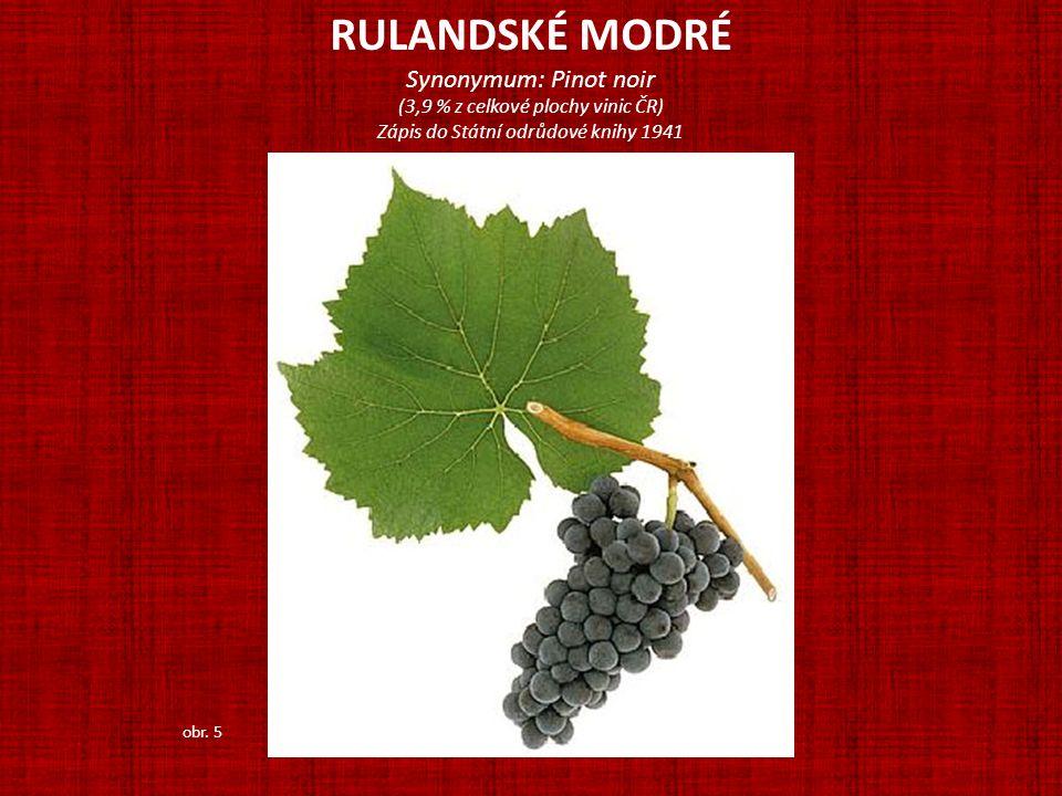 RULANDSKÉ MODRÉ Synonymum: Pinot noir (3,9 % z celkové plochy vinic ČR) Zápis do Státní odrůdové knihy 1941 obr. 5