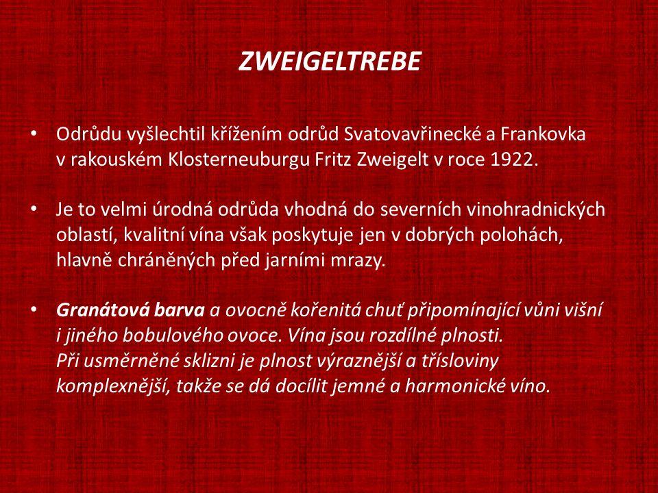 ZWEIGELTREBE Odrůdu vyšlechtil křížením odrůd Svatovavřinecké a Frankovka v rakouském Klosterneuburgu Fritz Zweigelt v roce 1922. Je to velmi úrodná o
