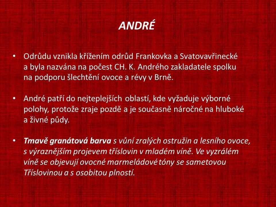 ANDRÉ Odrůdu vznikla křížením odrůd Frankovka a Svatovavřinecké a byla nazvána na počest CH. K. Andrého zakladatele spolku na podporu šlechtění ovoce