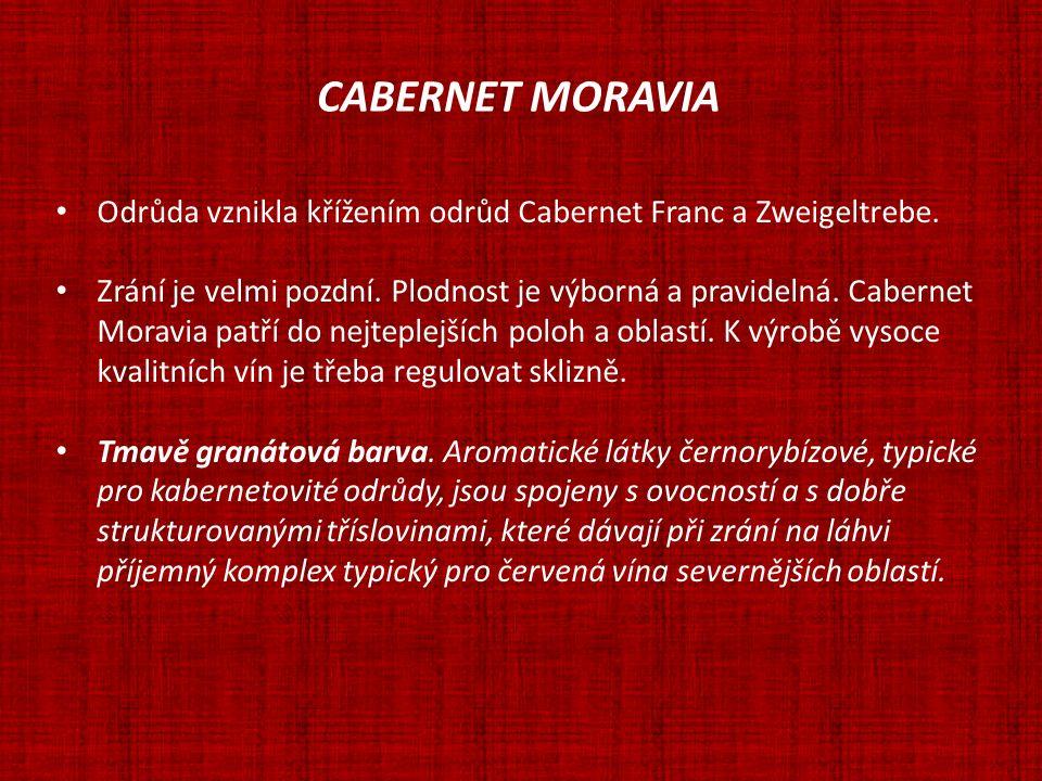 CABERNET MORAVIA Odrůda vznikla křížením odrůd Cabernet Franc a Zweigeltrebe. Zrání je velmi pozdní. Plodnost je výborná a pravidelná. Cabernet Moravi