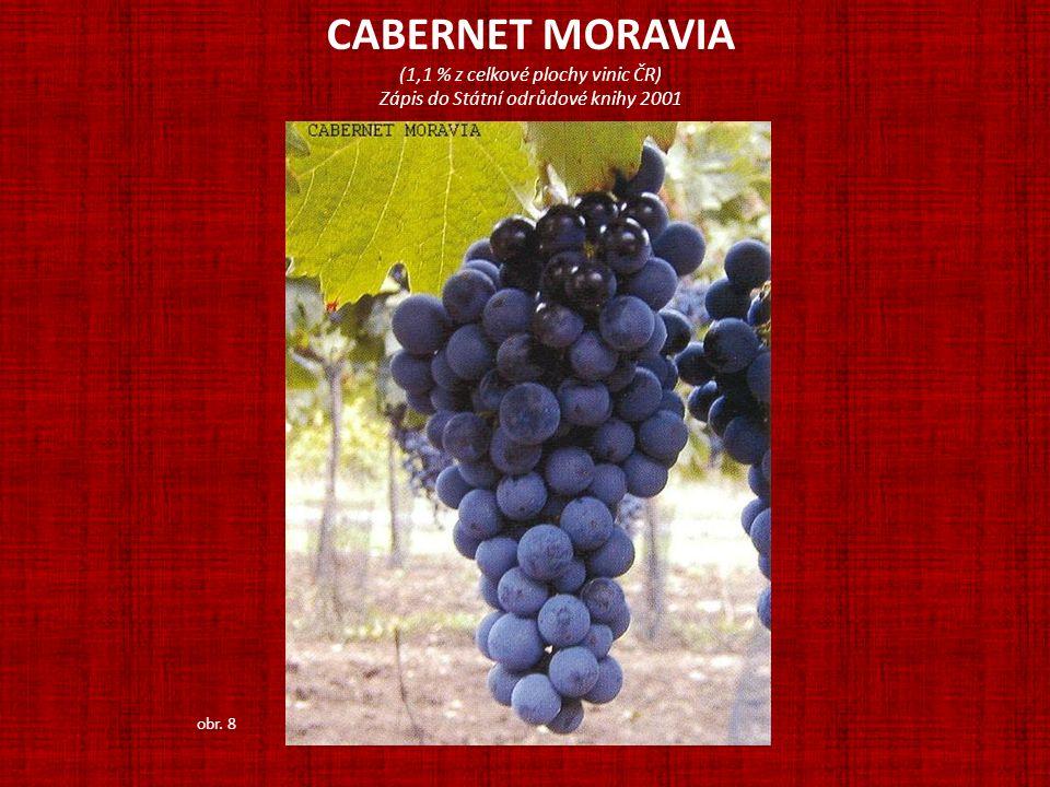 CABERNET MORAVIA (1,1 % z celkové plochy vinic ČR) Zápis do Státní odrůdové knihy 2001 obr. 8