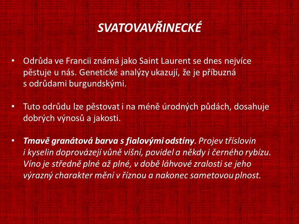 SVATOVAVŘINECKÉ Synonymum: Saint Laurent (8,7 % z celkové plochy vinic ČR) Zápis do Státní odrůdové knihy 1941 obr.