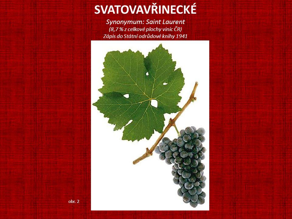 SVATOVAVŘINECKÉ Synonymum: Saint Laurent (8,7 % z celkové plochy vinic ČR) Zápis do Státní odrůdové knihy 1941 obr. 2