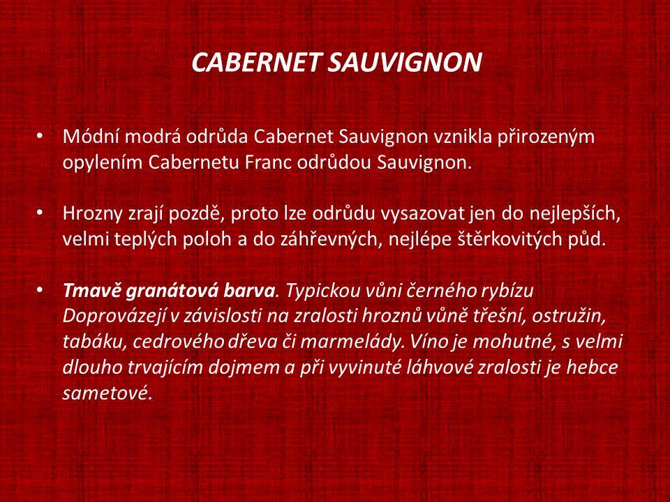 CABERNET SAUVIGNON Módní modrá odrůda Cabernet Sauvignon vznikla přirozeným opylením Cabernetu Franc odrůdou Sauvignon. Hrozny zrají pozdě, proto lze