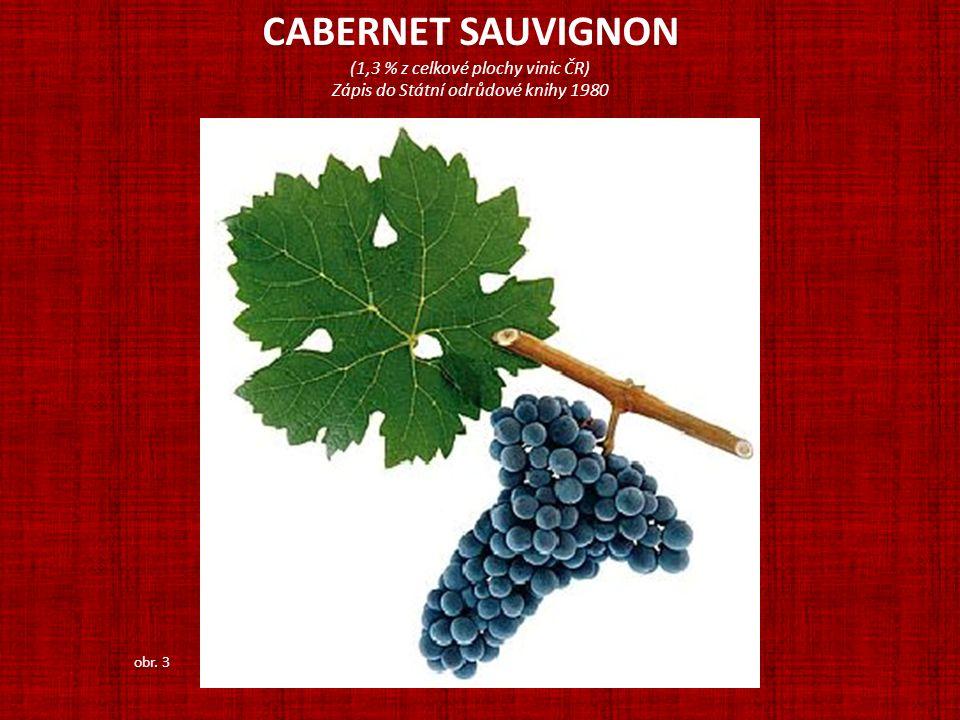 CABERNET SAUVIGNON (1,3 % z celkové plochy vinic ČR) Zápis do Státní odrůdové knihy 1980 obr. 3