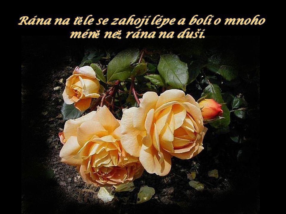 Nejsmutn ě jšími sny v ž ivot ě jsou ty, o kterých víme, ž e se nám nikdy nesplní !!!