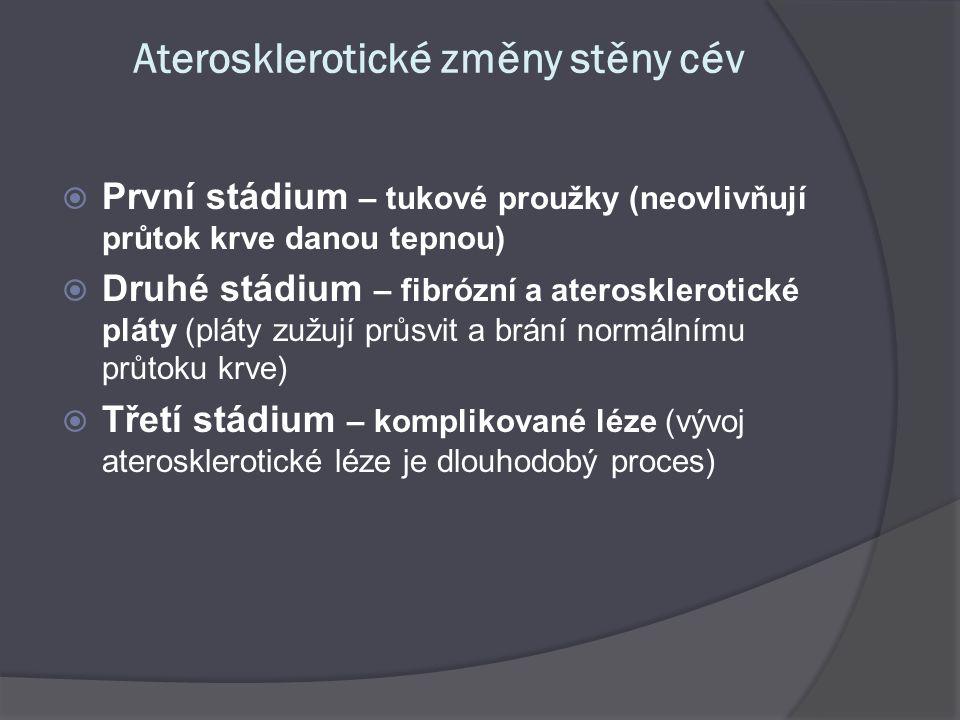 Aterosklerotické změny stěny cév  První stádium – tukové proužky (neovlivňují průtok krve danou tepnou)  Druhé stádium – fibrózní a aterosklerotické