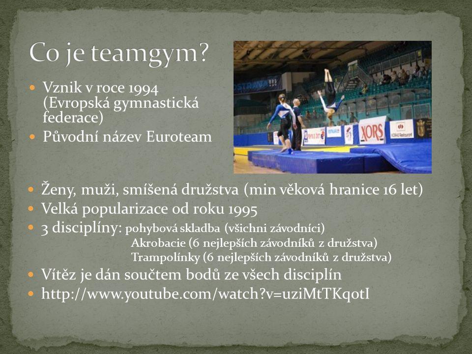 Vznik v roce 1994 (Evropská gymnastická federace) Původní název Euroteam Ženy, muži, smíšená družstva (min věková hranice 16 let) Velká popularizace o