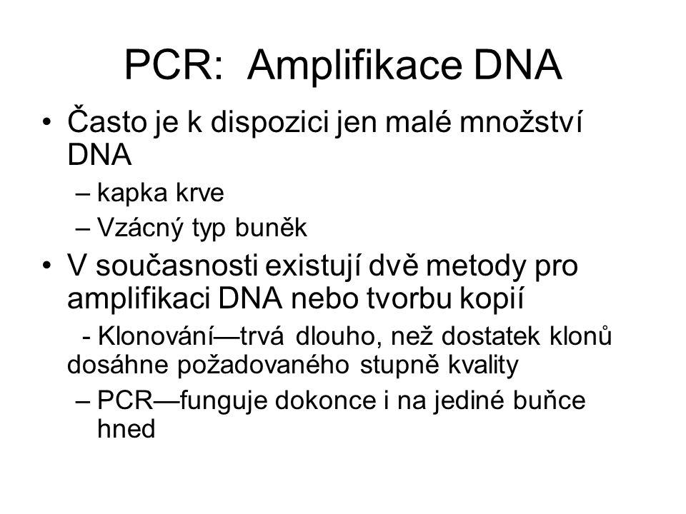 PCR: Amplifikace DNA Často je k dispozici jen malé množství DNA –kapka krve –Vzácný typ buněk V současnosti existují dvě metody pro amplifikaci DNA ne