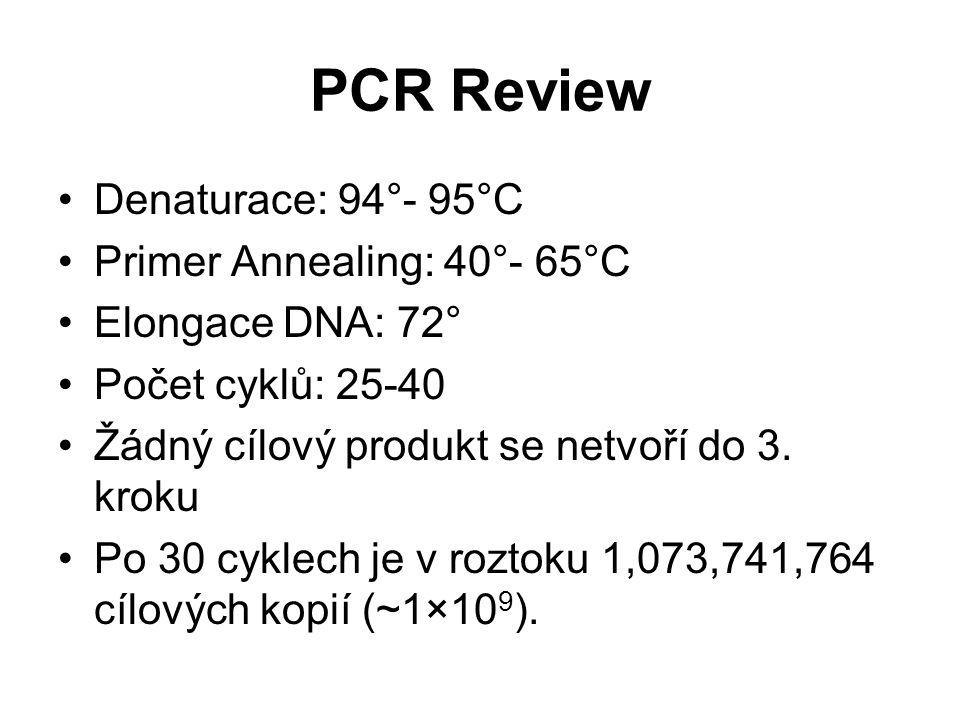 PCR Review Denaturace: 94°- 95°C Primer Annealing: 40°- 65°C Elongace DNA: 72° Počet cyklů: 25-40 Žádný cílový produkt se netvoří do 3. kroku Po 30 cy