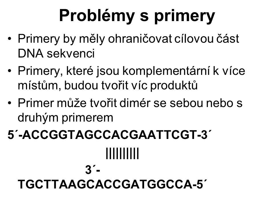 Problémy s primery Primery by měly ohraničovat cílovou část DNA sekvenci Primery, které jsou komplementární k více místům, budou tvořit víc produktů P