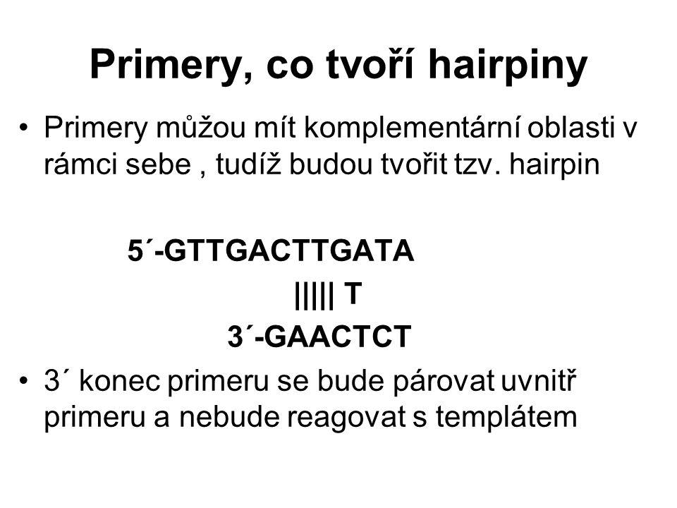 Primery, co tvoří hairpiny Primery můžou mít komplementární oblasti v rámci sebe, tudíž budou tvořit tzv. hairpin 5´-GTTGACTTGATA ||||| T 3´-GAACTCT 3