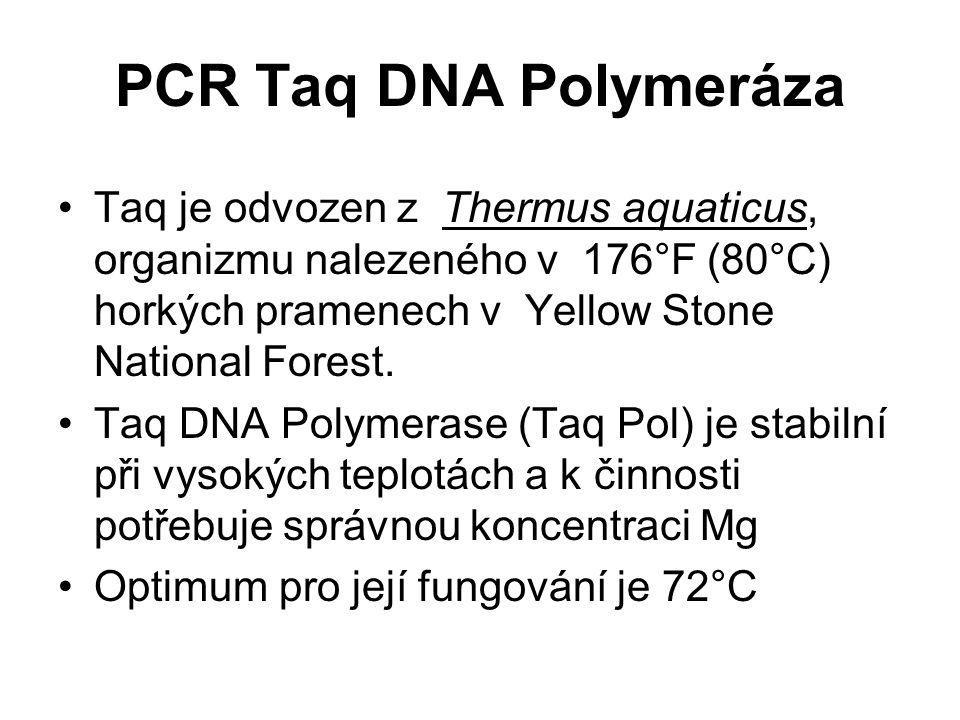 PCR Taq DNA Polymeráza Taq je odvozen z Thermus aquaticus, organizmu nalezeného v 176°F (80°C) horkých pramenech v Yellow Stone National Forest. Taq D