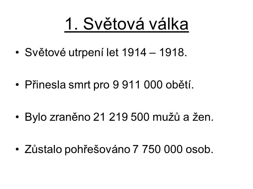 Světové utrpení let 1914 – 1918. Přinesla smrt pro 9 911 000 obětí. Bylo zraněno 21 219 500 mužů a žen. Zůstalo pohřešováno 7 750 000 osob.