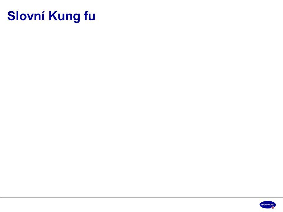 Slovní Kung fu