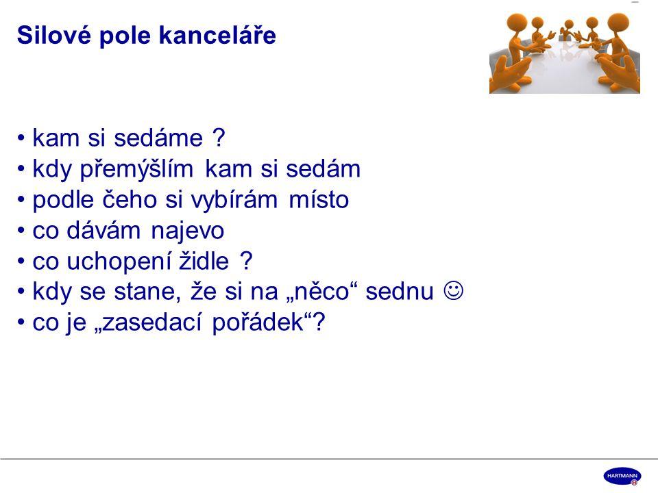 Děkuji za pozornost! a v roce 2013 hodně úspěchů v pracovním i osobním životě ! Martina Sedláková