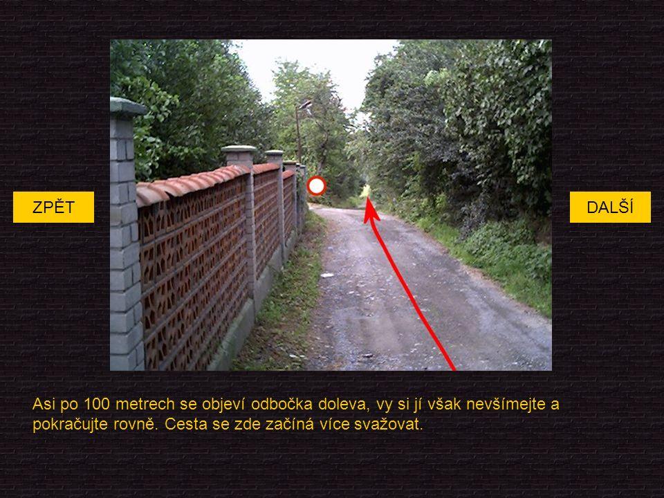 Asi po 100 metrech se objeví odbočka doleva, vy si jí však nevšímejte a pokračujte rovně.