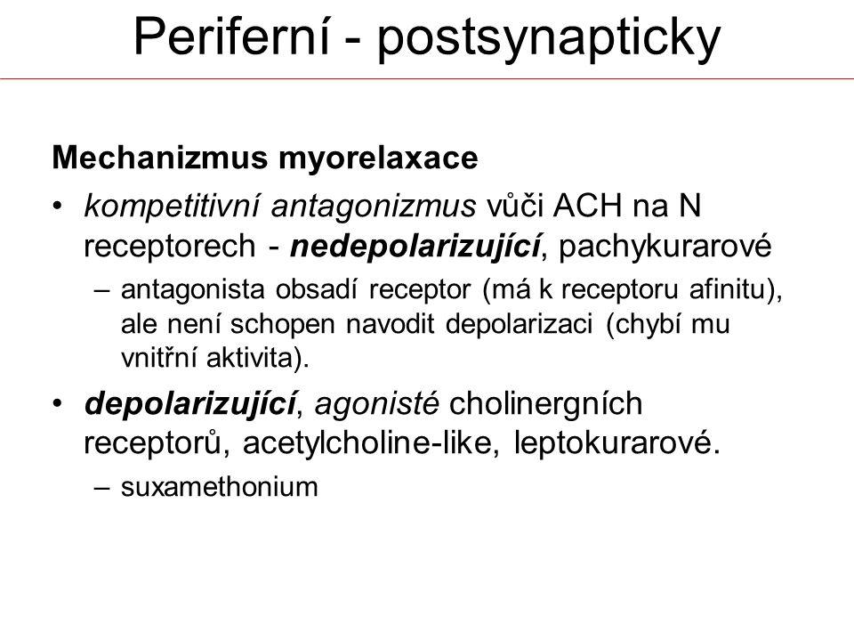 Periferní - postsynapticky Mechanizmus myorelaxace kompetitivní antagonizmus vůči ACH na N receptorech - nedepolarizující, pachykurarové –antagonista