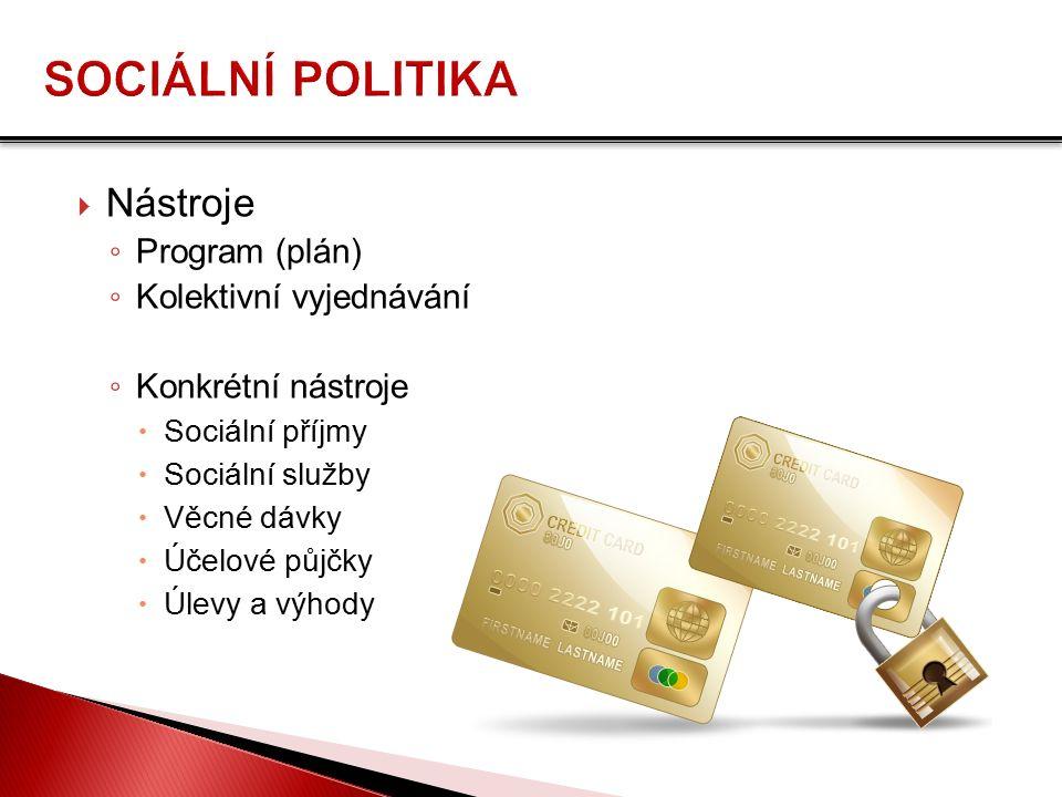  Nástroje ◦ Program (plán) ◦ Kolektivní vyjednávání ◦ Konkrétní nástroje  Sociální příjmy  Sociální služby  Věcné dávky  Účelové půjčky  Úlevy a výhody