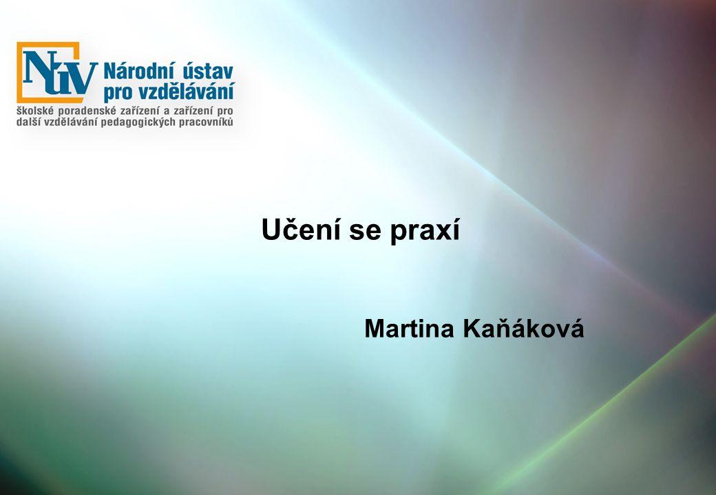 Učení se praxí Martina Kaňáková