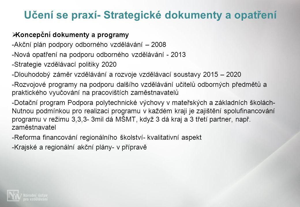 Učení se praxí- Strategické dokumenty a opatření  Koncepční dokumenty a programy -Akční plán podpory odborného vzdělávání – 2008 -Nová opatření na podporu odborného vzdělávání - 2013 -Strategie vzdělávací politiky 2020 -Dlouhodobý záměr vzdělávání a rozvoje vzdělávací soustavy 2015 – 2020 -Rozvojové programy na podporu dalšího vzdělávání učitelů odborných předmětů a praktického vyučování na pracovištích zaměstnavatelů -Dotační program Podpora polytechnické výchovy v mateřských a základních školách- Nutnou podmínkou pro realizaci programu v každém kraji je zajištění spolufinancování programu v režimu 3,3,3- 3mil dá MŠMT, když 3 dá kraj a 3 třetí partner, např.