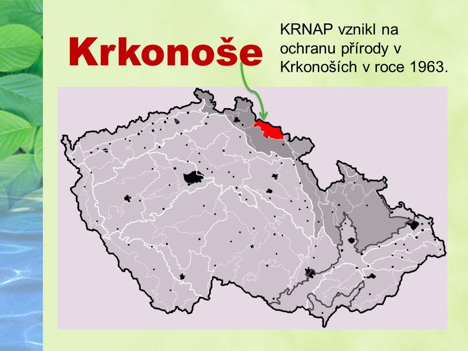 Krkonošský národní park KRNAP