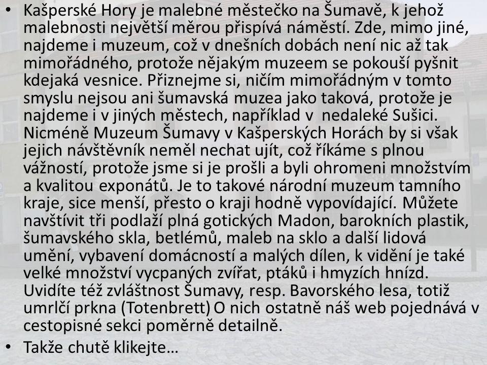 Kašperské Hory je malebné městečko na Šumavě, k jehož malebnosti největší měrou přispívá náměstí. Zde, mimo jiné, najdeme i muzeum, což v dnešních dob