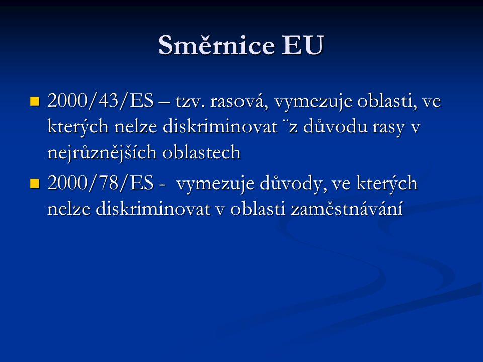Směrnice EU 2000/43/ES – tzv.