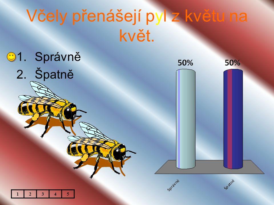 Včely přenášejí pyl z květu na květ. 1.Správně 2.Špatně 12345