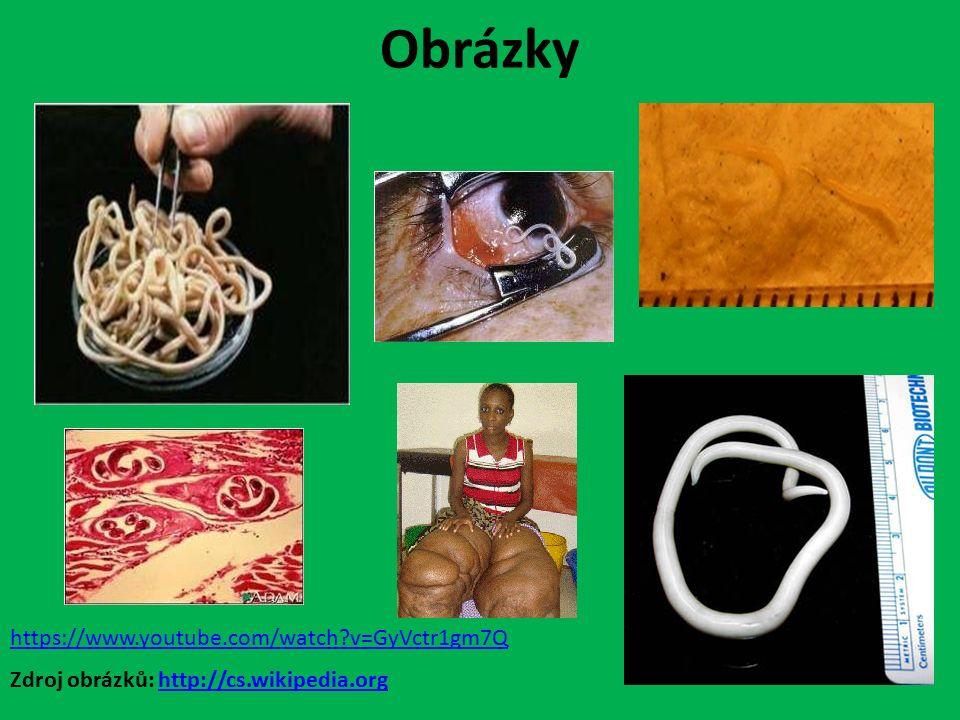 Obrázky Zdroj obrázků: http://cs.wikipedia.orghttp://cs.wikipedia.org https://www.youtube.com/watch v=GyVctr1gm7Q