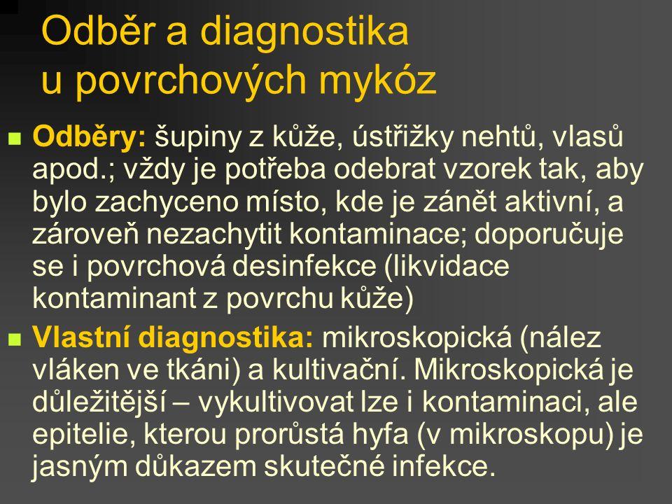 Diagnostika mykóz