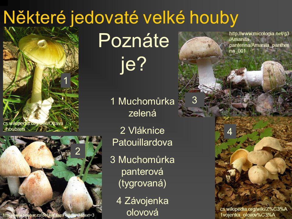 Houby a zdraví Kromě mikroskopických hub, o kterých je řeč v tomto praktiku, nesmíme zapomenout ani na houby, které mají makroskopické plodnice Otravy