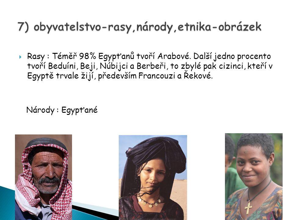  Rasy : Téměř 98% Egypťanů tvoří Arabové.