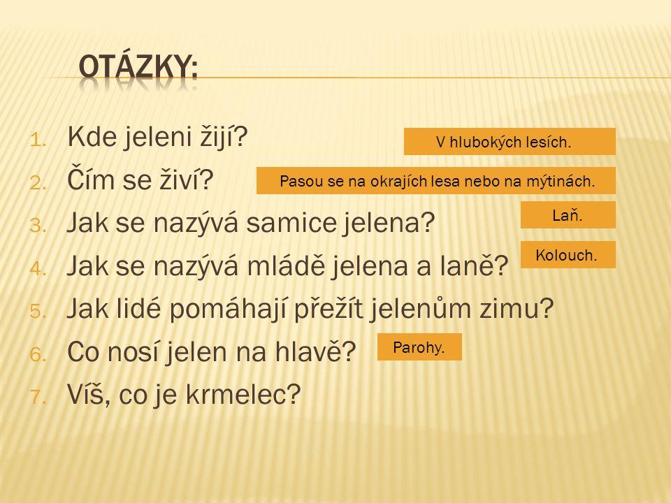  obrázek 1 - YUG.wikipedia.cz [online]. [cit. 22.9.2012].