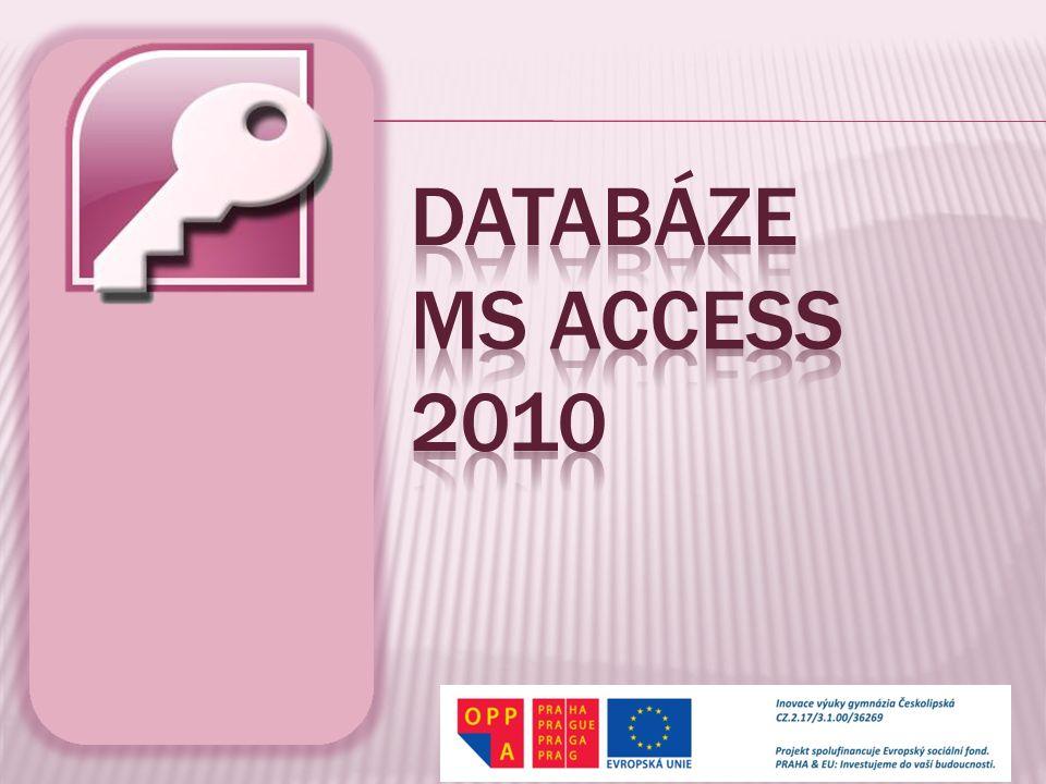  Databáze obvykle obsahuje větší množství dat.