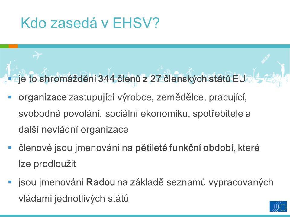 Kdo zasedá v EHSV.
